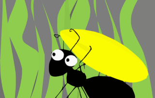 Laurine Autin_La fourmi n'a pas de vision à long terme