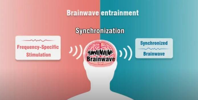 Une AI qui stimule les ondes cérébrales toute seule